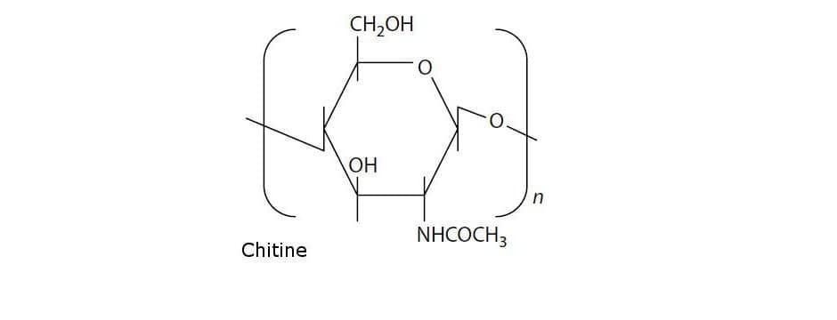 formule de la chitine